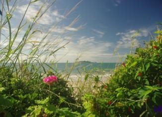 Playa de los Ingleses - norte